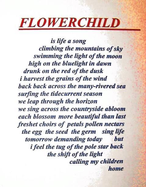 FlowerChild Sassman