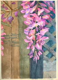 Watercolor of Wisteria by Roy Beckemeyer
